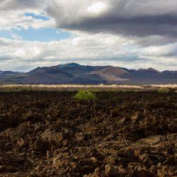 Chyulu Hills burning reveals Kenya's squatter dilemma